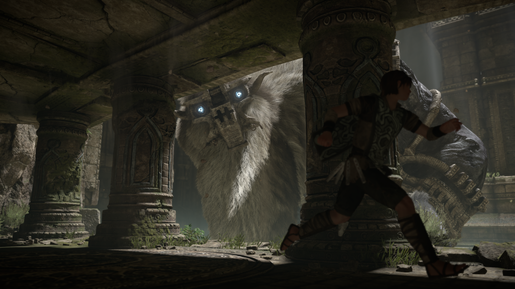 barba Shadow of the Colossus